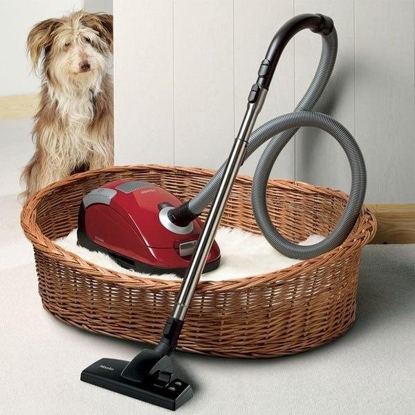 Máy hút bụi mang lại hiệu quả làm sạch lông thú cưng tốt nhất