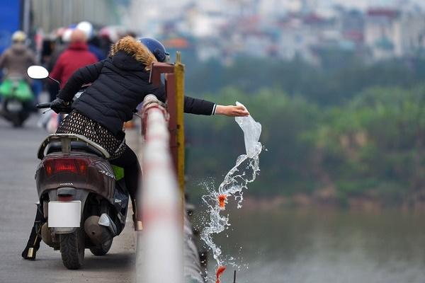 Không thả cá từ trên cao và vứt túi nilon ra ngoài môi trường