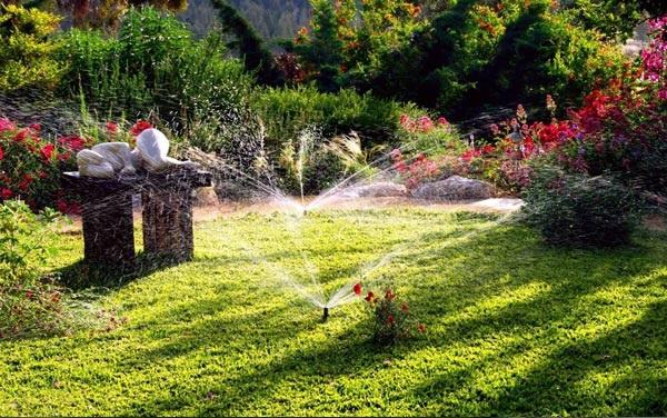 Xây dựng hệ thống tưới nước cho cỏ