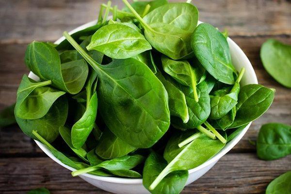 thực phẩm tăng cường sức đề kháng cơ thể