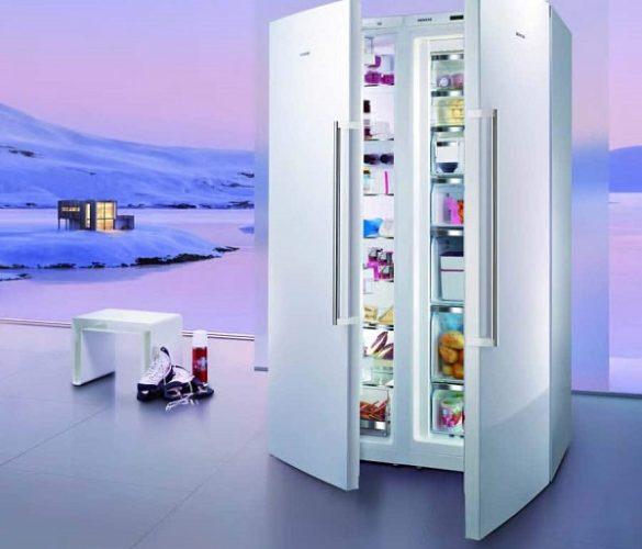 Tủ đông bảo quản mẫu vật, sản phẩm