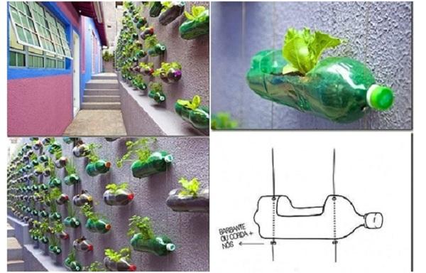 Tái chế chai nhựa làm chậu hoa vườn hoa đứng