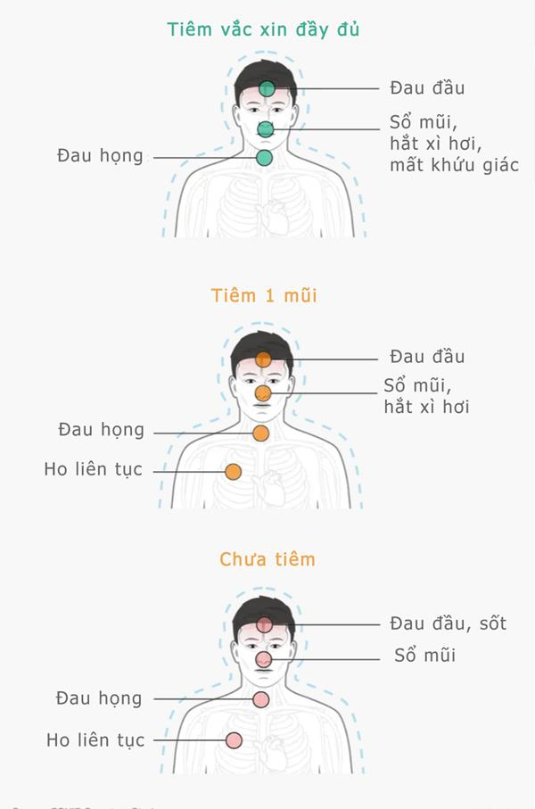 biểu đồ triệu chứng covid-19